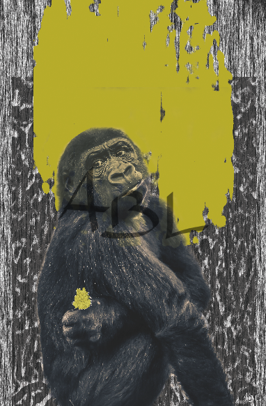 le singe  40x60cm